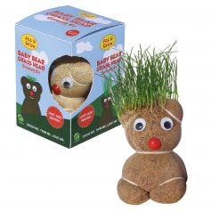340180 Baby Bear Grass