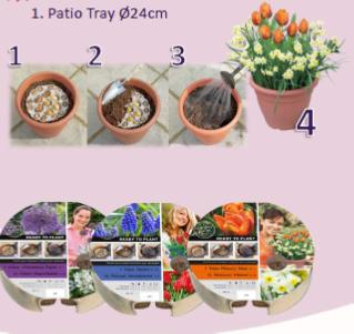 plantschaal patio