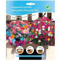 prachtige petunia mix