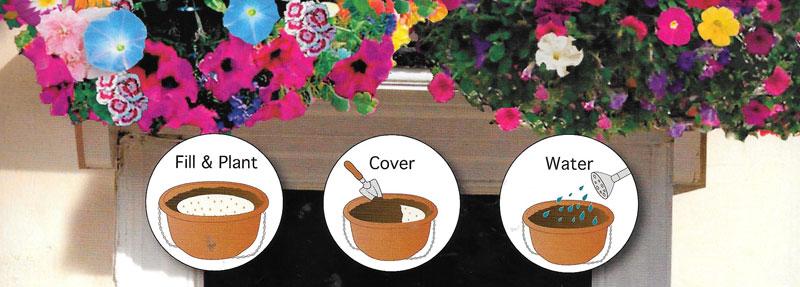 planten zaadschijf