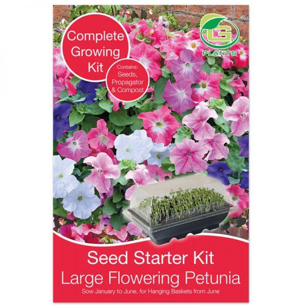 petunia grootbloemig mix starterkit