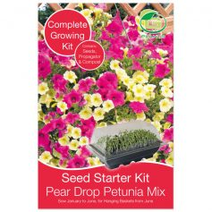 petunia pear drop mix starterkit