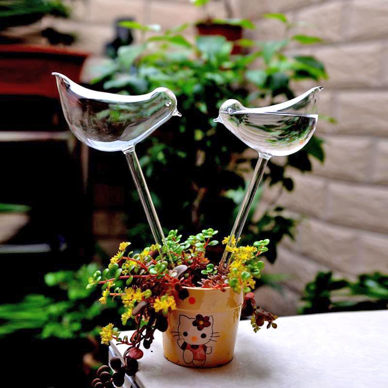 planten watergever vogel in pot