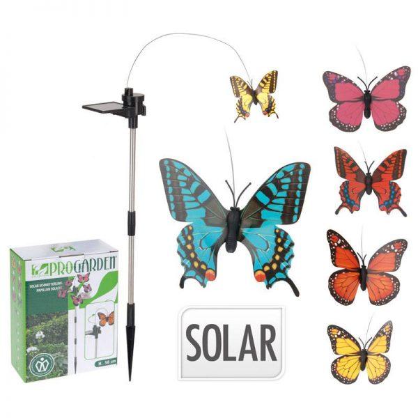 solar vlinder