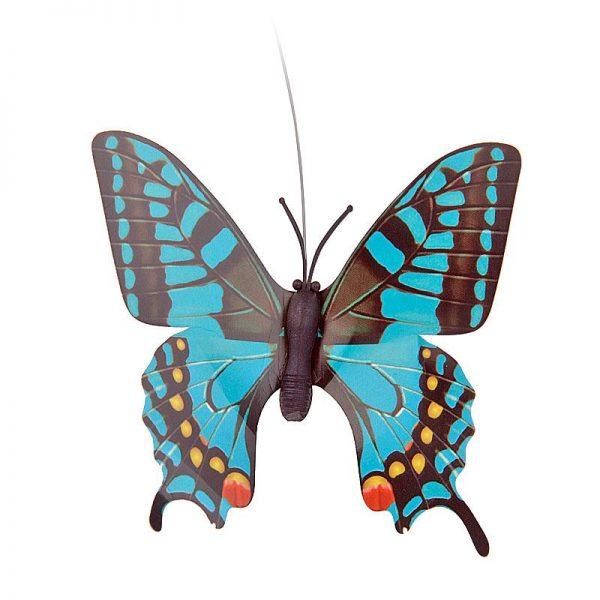 solar vlinder blauw