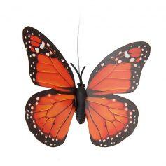 solar vlinder oranje