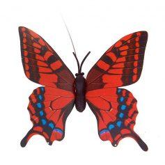 solar vlinder rood