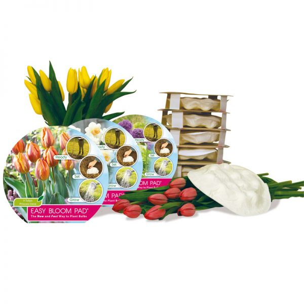 easybloompad collectie