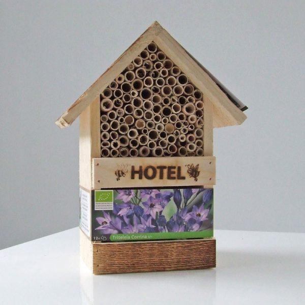 Bijenhotel met Triteleia Corrina