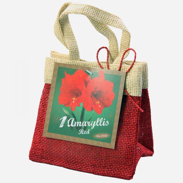 Rode Amaryllis Christmas Range Santa Bag