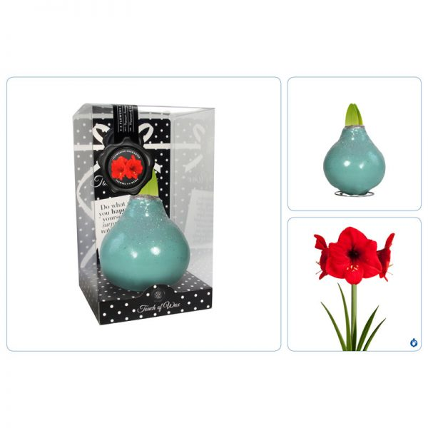 Touch of Wax Amaryllis Vintage Groen Fashion
