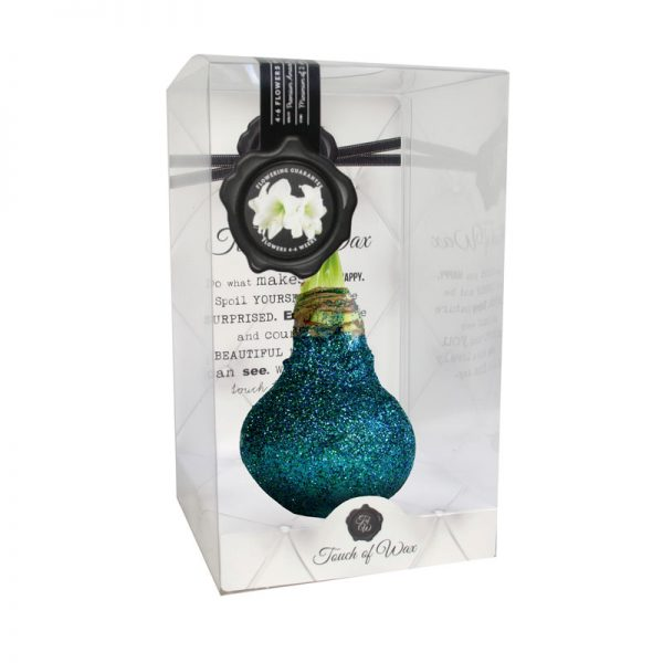 Touch of Wax Amaryllis Ocean Glitter Glamour (wit)